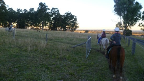 ‪Hunter Valley Horseriding and Adventures‬