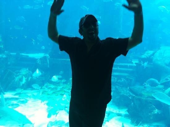 Fakieh Aquarium: ???