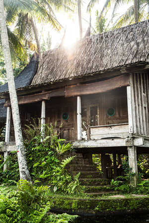 Bambu Indah: Padi House