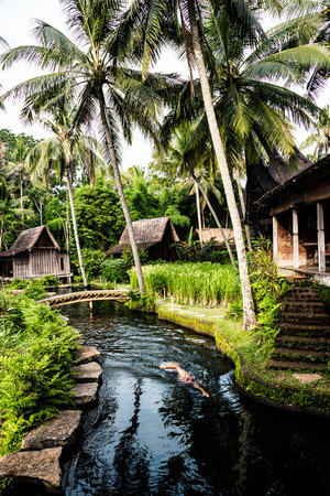 Bambu Indah: Our natural swimming pond.