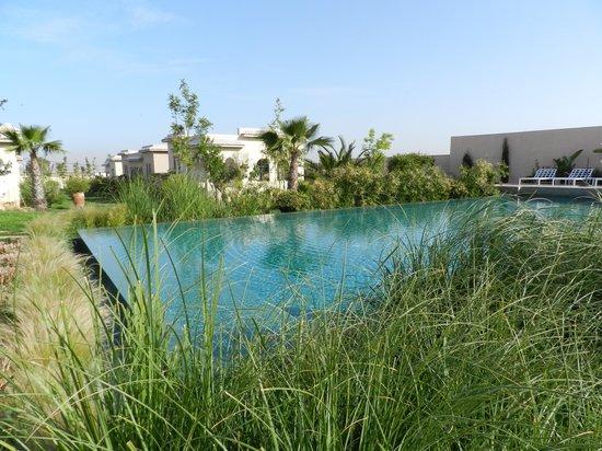 Les Cypres : La piscine