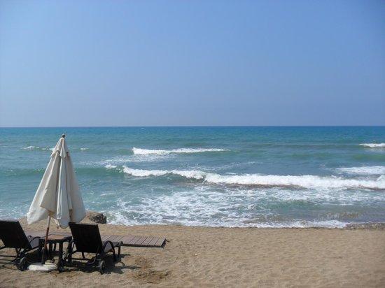 Villa Augusto: пляж