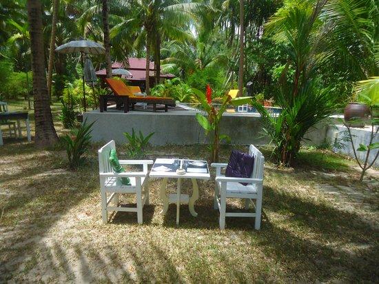 Delicat & Sens: Vue sur la piscine
