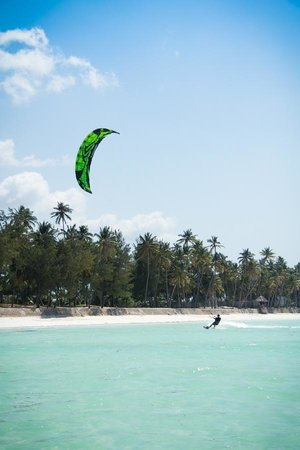 Savanna and Ocean: Kiting