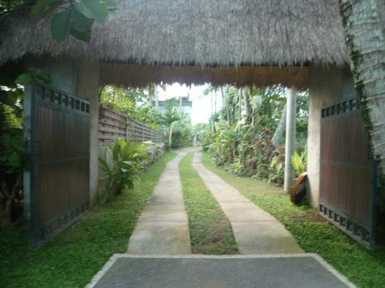 Casa Mas villa : Chemin arrivant a la maison
