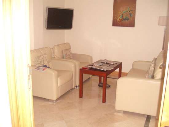 Park Place Apartments : lounge in the town house, very nice room..