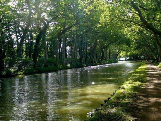 Le Domaine de Loustalviel: Evening on the Canal du Midi