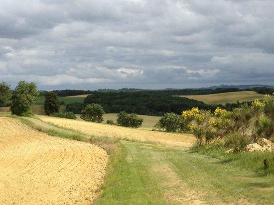 Le Domaine de Loustalviel: View from the ridge