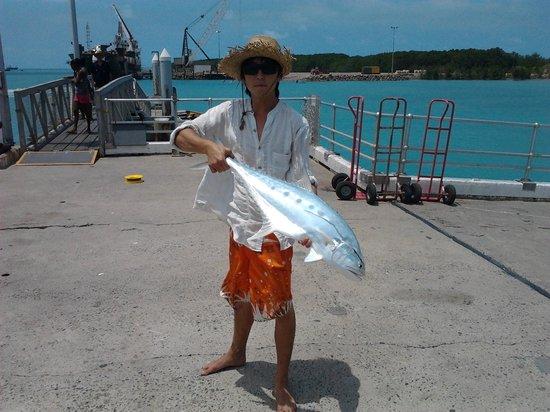 Horn Island Jetty: 1metre queenfish