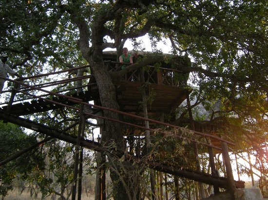Pezulu Tree House Game Lodge: Our friends' unit
