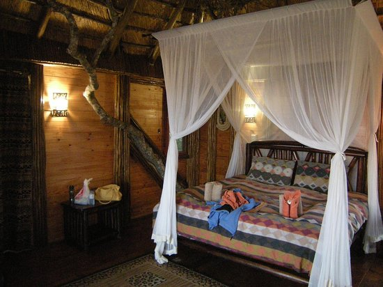 Pezulu Tree House Game Lodge: Bedroom
