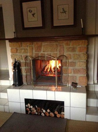 The Highlander Country Retreat & Spa: Fireplace in our room