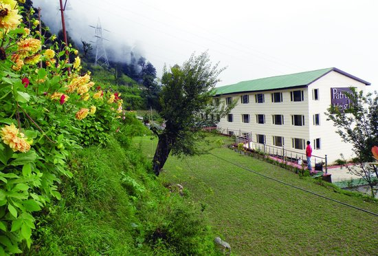 Hotel Patnitop Heights: Lawn