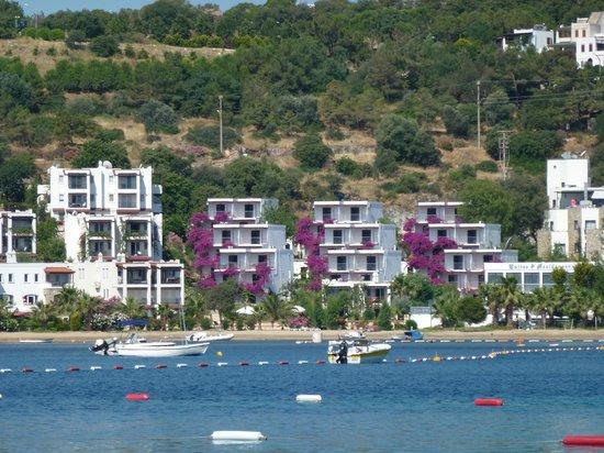 Bitez Beach: beach