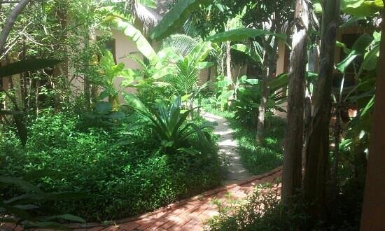 Botanica Guest House: lovely walking area