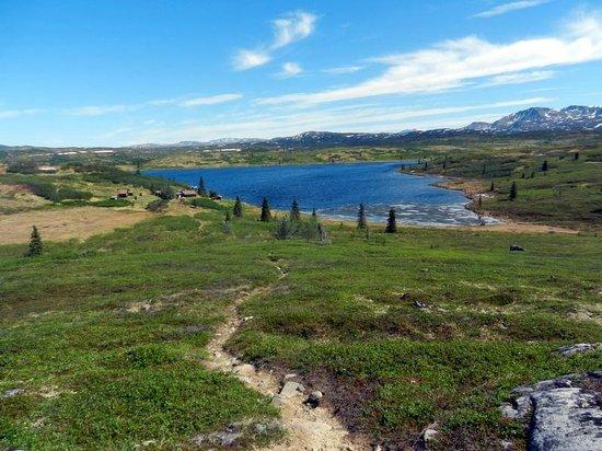 Caribou Lodge Alaska: Just a day at Caribou Lodge