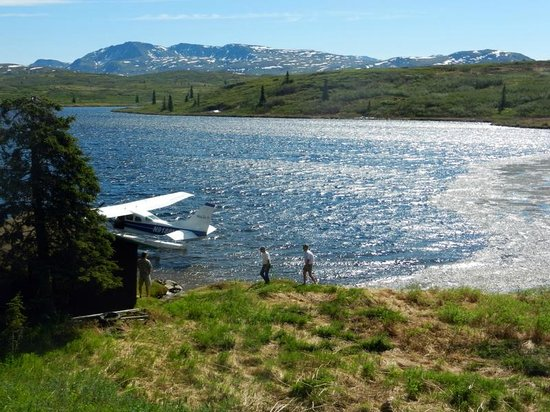 Caribou Lodge Alaska : Just a day at Caribou Lodge