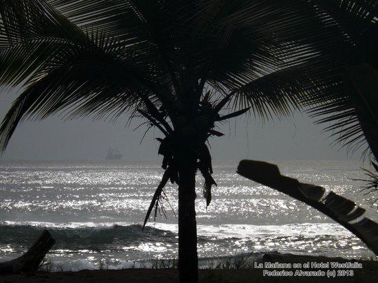 Hotel Playa Westfalia: Cerca de la playa