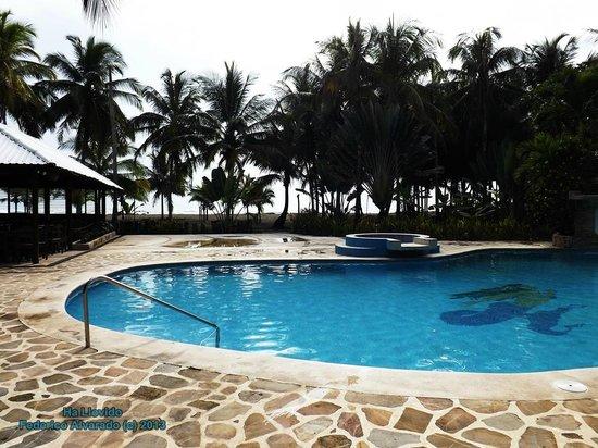 Hotel Playa Westfalia: Piscina