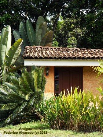 Hotel Playa Westfalia: Habitación Externa
