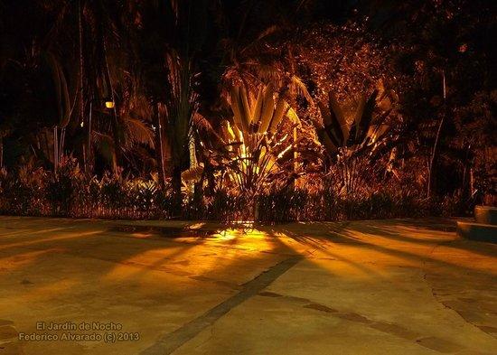 Hotel Playa Westfalia: Jardines de noche