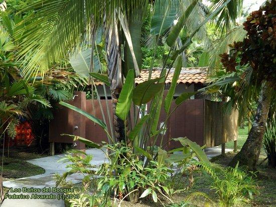 Hotel Playa Westfalia : Baños Externos