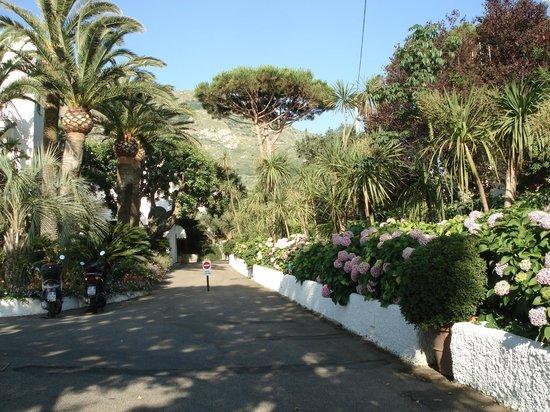 Hotel Parco Maria Terme: Eingangsbeich zum Hotel