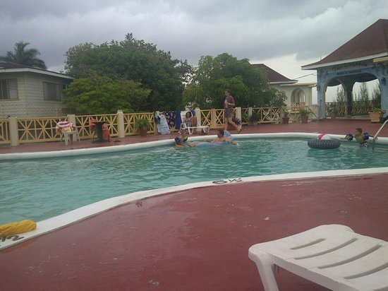 Coral Seas Garden: The pool