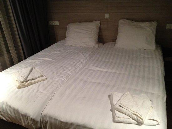 City Hotel Amsterdam: Disgusting
