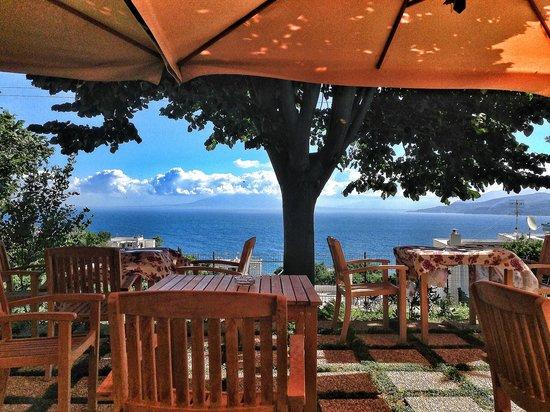 Capri Wine Hotel : Giardino Colazioni