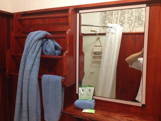 Glen Innes Motel: Unusual bathroom, pretty tight