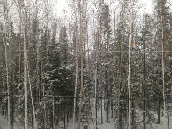 Best Western Plus Chena River Lodge: Not much of a view, but very quiet