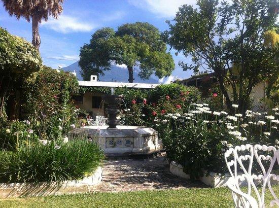 San Jorge Hotel: hotel garden