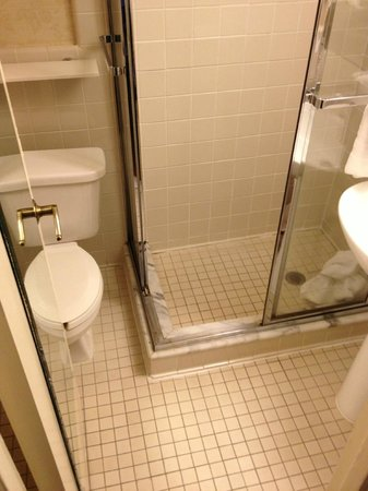 The Roosevelt Hotel: You have to step into the shower, shut the door, to get to the toilet