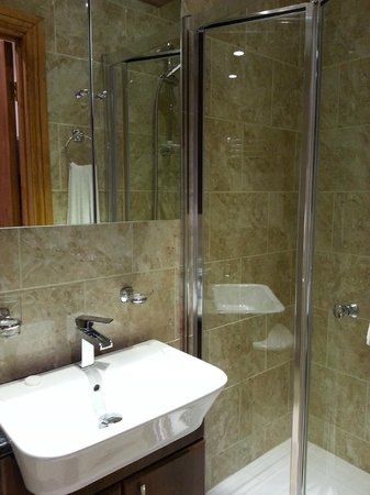Copper Beech House Luxury Bed and Breakfast: Modern Bathroom