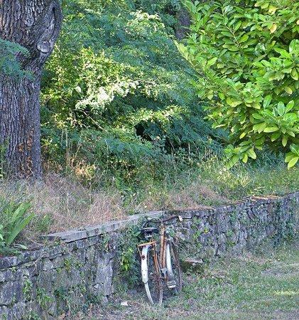 Les Chenes : la vecchia bicicletta