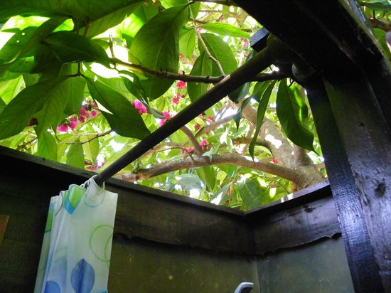 Ayothaya Riverside Hotel: This was the open roof of shower in first floor