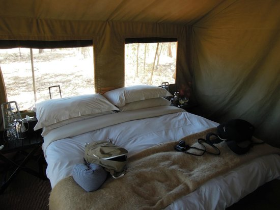 andBeyond Chobe Under Canvas 사진