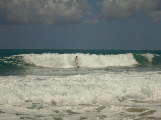 Pousada Maraca Beach: Praia de Surf