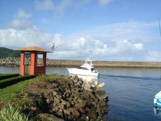 Jaco Tours & Sportfishing: Best Fishing Trip