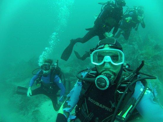 Galapagos Underwater: Deep water dive!