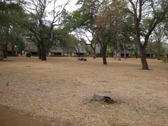 Satara Rest Camp: Circle E - beautiful!