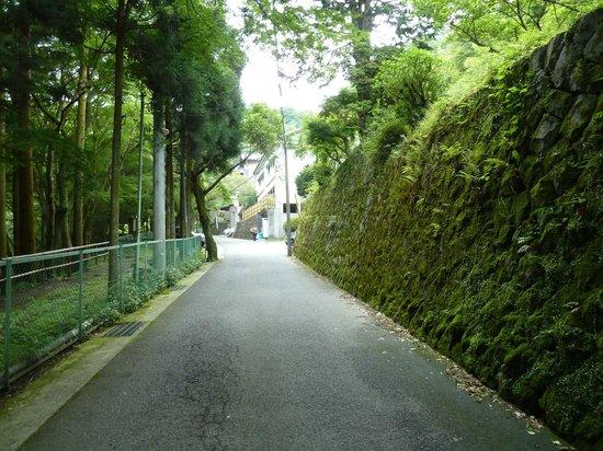 Kamata : Walk to hotel