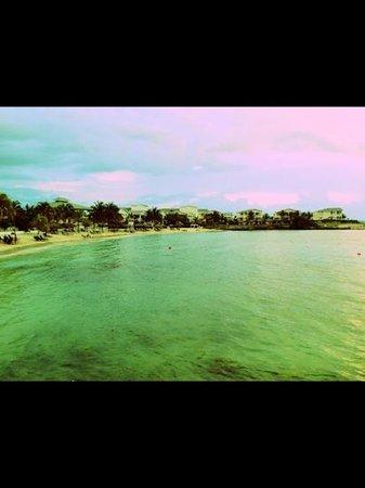 Grand Palladium Lady Hamilton Resort & Spa: La Brisas Beach during Sunset