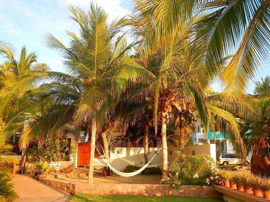 Casa Costa Azul: Area de hamacas