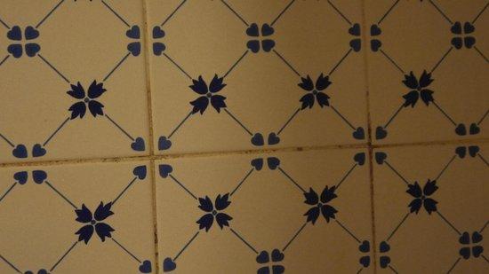 Acqua Maris Balaia: Azulejos Banheira