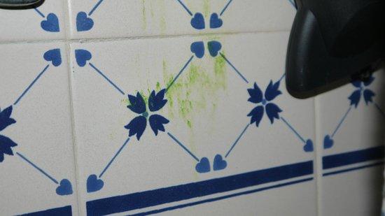 Acqua Maris Balaia: Azulejos da casa de banho