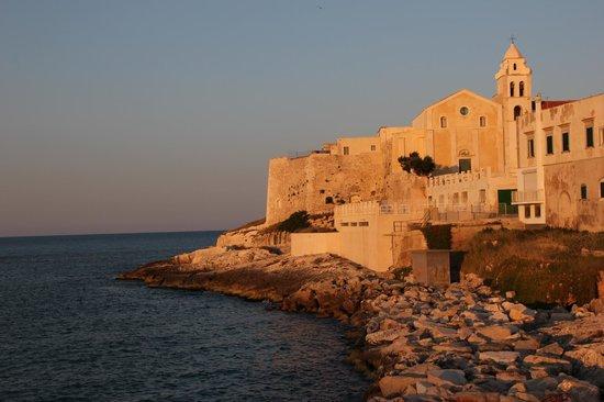 Hotel Punta San Francesco: L'hotel al tramonto