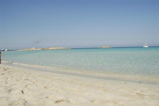 Hotel Rosamar : Riserva naturale... Playa ILLETTES