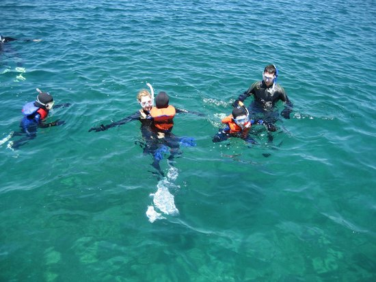 Divers Den : Our first time snorkeling!